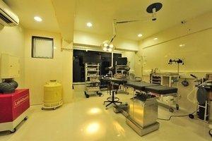 Dr Meenu Agarwal|Dhole Patil Road,Pune