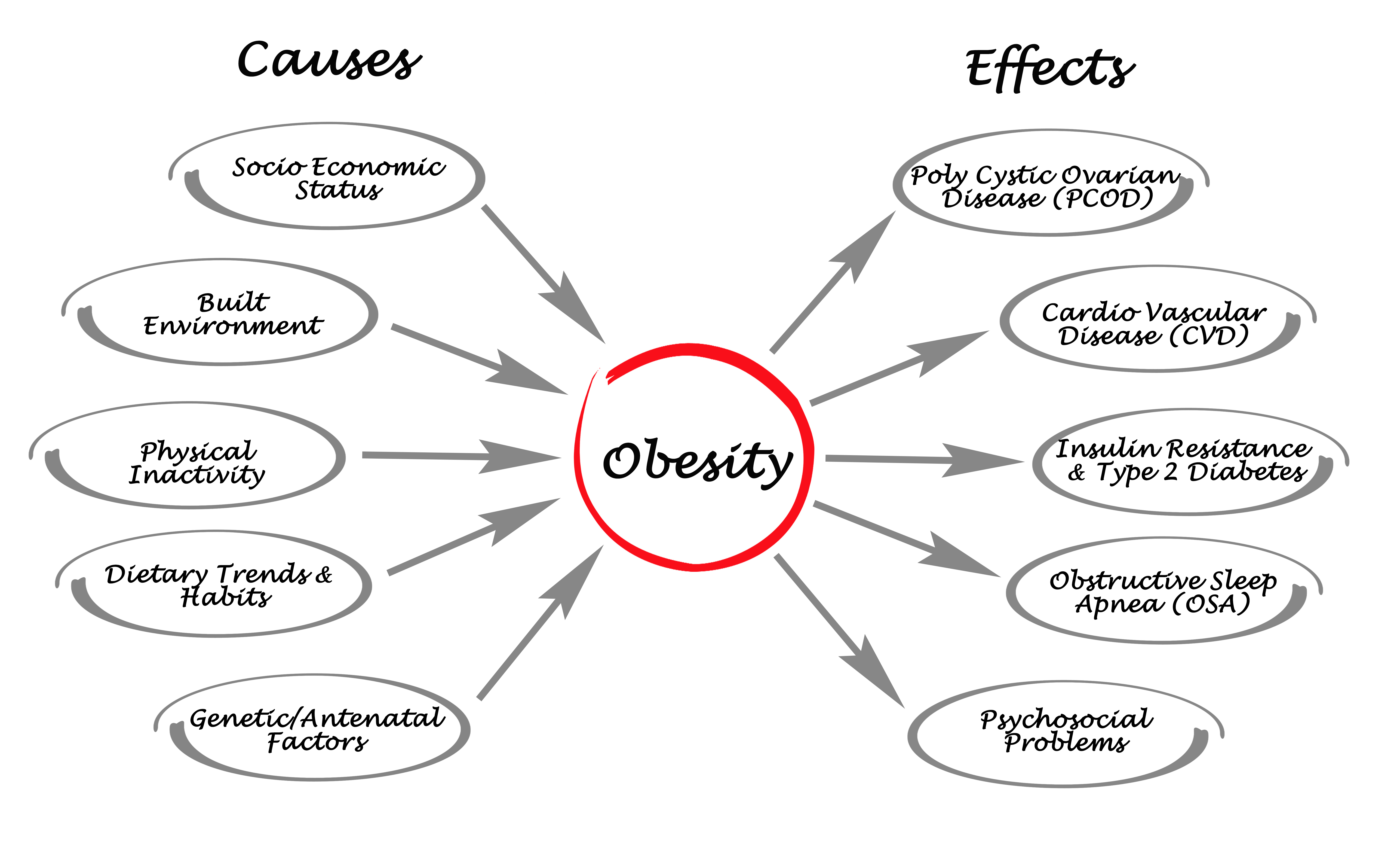 causes and effects of childhood obesity essay Nowadays, obesity is becoming more and more common in children than adults, which has alarming effects on the communitythis essay will discuss the causes and effects of obesity and what are the ways that government can do as well as the families.